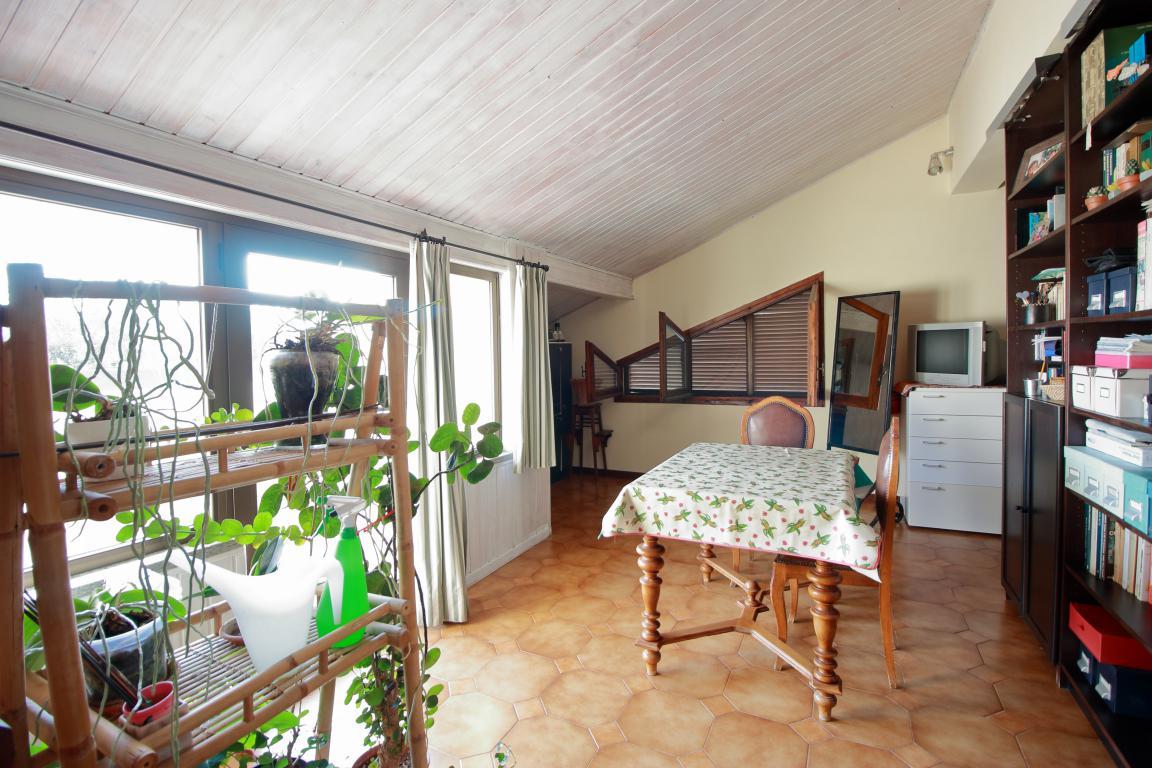 23 - Foce - Villa con giardino - Libreria