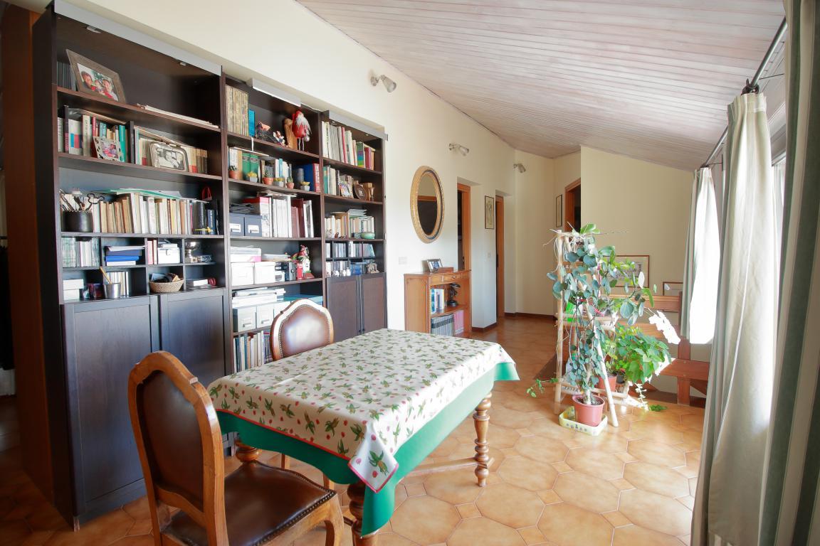 24 - Foce - Villa con giardino - Libreria